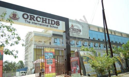 Orchids The International School